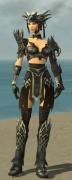 Warrior Silver Eagle Armor F gray front.jpg