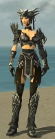 Warrior Silver Eagle Armor F gray front.jpg