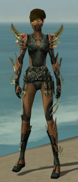 Assassin Elite Imperial Armor F dyed front.jpg