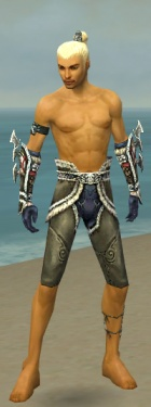 Assassin Norn Armor M gray arms legs front.jpg