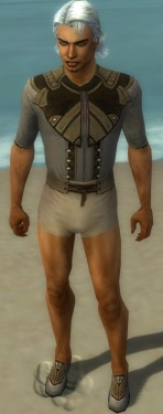 Dervish Asuran Armor M gray chest feet front.jpg