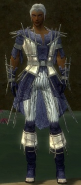 Elementalist Primeval Armor M dyed front.jpg