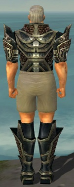 Warrior Elite Kurzick Armor M gray chest feet back.jpg