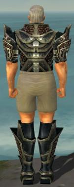 Warrior Elite Kurzick Armor M gray chest feet back.jpg