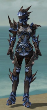Warrior Primeval Armor F dyed front.jpg