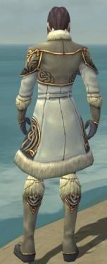 Elementalist Norn Armor M gray back.jpg
