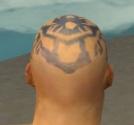 Monk Istani Armor M gray head back.jpg