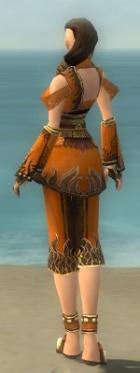 Monk Deldrimor Armor F dyed back.jpg