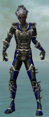 Necromancer Kurzick Armor M dyed front.jpg