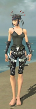 Necromancer Profane Armor F gray arms legs front.jpg