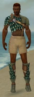 Ranger Drakescale Armor M gray chest feet front.jpg