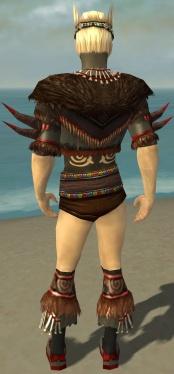 Ritualist Norn Armor M gray chest feet back.jpg