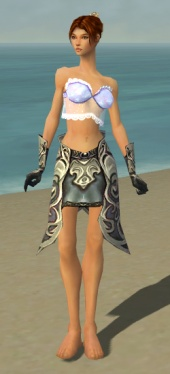 Elementalist Monument Armor F gray arms legs front.jpg
