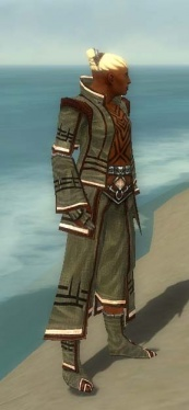 Monk Kurzick Armor M gray side.jpg