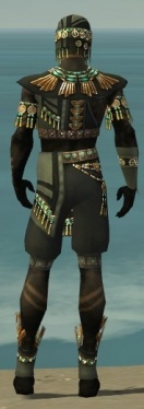 Ritualist Elite Luxon Armor M gray back.jpg