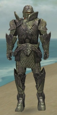 Warrior Elite Platemail Armor M gray front.jpg