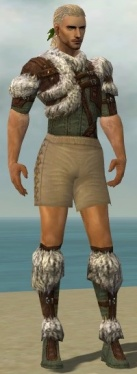 Ranger Elite Fur-Lined Armor M gray chest feet front.jpg