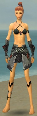 Assassin Elite Canthan Armor F gray arms legs front.jpg