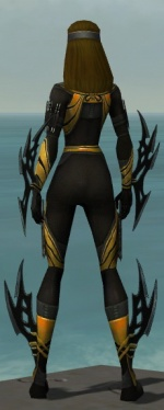 Assassin Vabbian Armor F dyed back.jpg