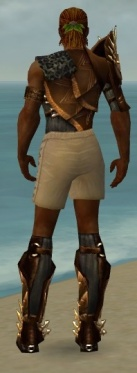 Ranger Elite Sunspear Armor M gray chest feet back.jpg