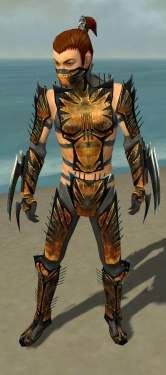 Assassin Elite Exotic Armor M gray front.jpg