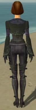 Mesmer Elite Rogue Armor F gray back.jpg
