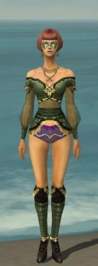 Mesmer Luxon Armor F gray chest feet front.jpg