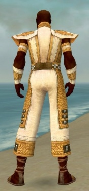 Monk Elite Saintly Armor M dyed back.jpg