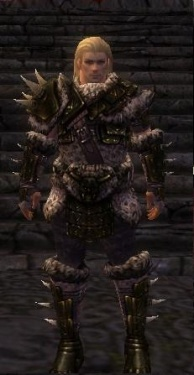 Warrior Elite Charr Hide Armor M nohelmet.jpg