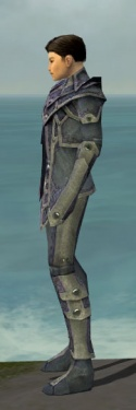 Elementalist Krytan Armor M gray side.jpg
