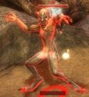 Image-Claw Fleshfixer.jpg