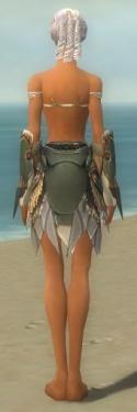 Paragon Norn Armor F gray arms legs back.jpg