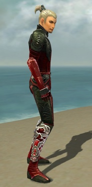 Assassin Deldrimor Armor M dyed side.jpg