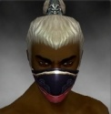 Assassin Monument Armor M dyed head front.jpg