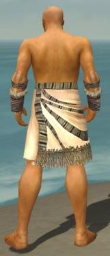 Monk Istani Armor M gray arms legs back.jpg