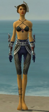 Assassin Norn Armor F gray arms legs front.jpg
