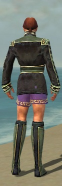 Mesmer Canthan Armor M gray chest feet back.jpg