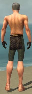 Mesmer Vabbian Armor M gray arms legs back.jpg
