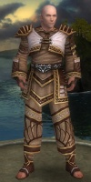 Monk Elite Canthan Armor M gray front.jpg
