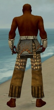 Monk Sunspear Armor M gray arms legs back.jpg