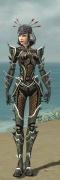 Necromancer Elite Kurzick Armor F gray front.jpg