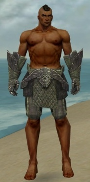 Warrior Elite Platemail Armor M gray arms legs front.jpg