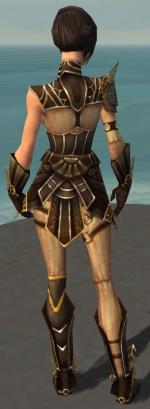 Acolyte Jin Armor DajkahInlet Back.jpg
