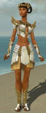 Paragon Ancient Armor F dyed front.jpg