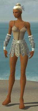 Warrior Ascalon Armor F gray arms legs front.jpg