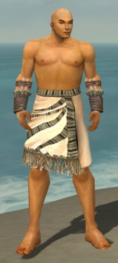 Monk Istani Armor M gray arms legs front.jpg