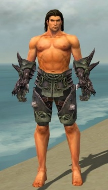 Warrior Primeval Armor M gray arms legs front.jpg