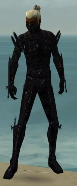 Assassin Obsidian Armor M dyed front.jpg
