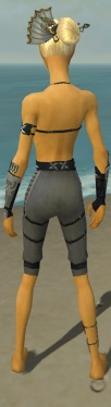 Assassin Shing Jea Armor F gray arms legs back.jpg