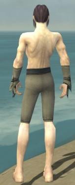 Elementalist Asuran Armor M gray arms legs back.jpg